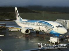 Best Airplane Paint Jobs | ... . We flew on this plane a couple days after it got its new paint job