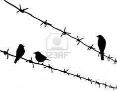 Bird Barbed Wire Silhouette Tattoo.. I would like to have this tattoo but instead of birds to have a raven sitting on the wire around my ankle