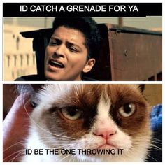 Grumpy cat, grumpy cat meme, grumpy cat humor, #GrumpyCat #Meme
