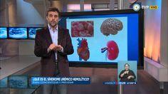 Visión 7 - Qué es el síndrome urémico hemolítico