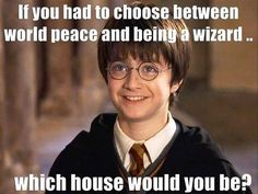 Probably slytherin since I totally just made that choice!
