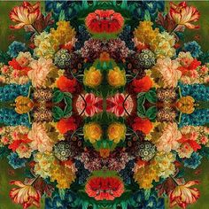@mag.gieshep.herd One of the exciting floral designs by Lizzy Montgomery. See her gallery @lizziemontgomerydesign  #stilllife #study #pattern #design #artwork #art #lizziemontgomerydesign #artist #floral #flora #garden #kaleidoscope #natural #nature #eco #botanical #botany #ecology #reflection #bright #daffodils #primula #tulips #peony #leaves