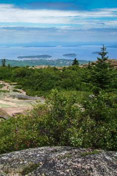 View from the summit of Cadillac Mountain, one of the highest on the Park Loop Road in Acadia National Park, Maine. Best Places To Camp, Camping Places, Acadia National Park Camping, Mount Desert Island, National Parks Usa, Natural Scenery, Beautiful Places In The World, Amazing Nature, Travel Inspiration