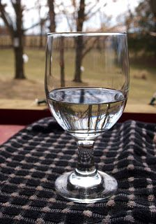 A glass of maple tree sap for health