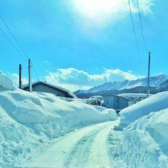 Instagram media by mizutamahanco - そわそわ落ち着かない。。。 青空パワーいただきます。  雪道はちょっと歩いただけでヘロヘロになる。  #米沢