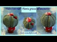 Pianta grassa all'uncinetto - Succulent plant - YouTube