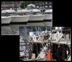 Kinn's Sport Fishing - Algoma, WI