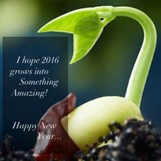 Happy 2016!! #healthyeating #cleaneating #grainfree #glutenfree #eatclean #mealprep #foodporn #foodstagram #instafood  #nutrition #whole30 #eat #healthy #eatwell #clean #keto #highprotein #gymfood #fitfood #healthychoices #lifestyle #diet #lowcarb #paleo #newyear by fuelfit