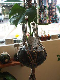 another macrame plant hanger idea