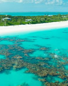 Yes, this is our water here in Harbour Island, Bahamas!