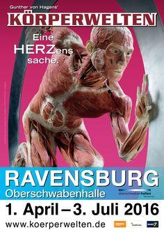 #körperwelten #ravensburg #gunthervonhagens #oberschwabenhalle #plastinate