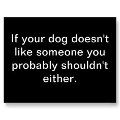 yeah it pretty much says it, though our little dog just doesn't like anyone who makes repairs