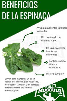 infografia Propiedades y beneficios de la espinaca