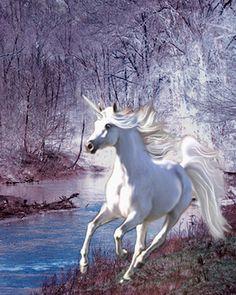 Unicorn Dream Horse Print Victorian Fantasy Pony 8x10 ABR | eBay Ann Reynolds