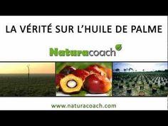 La vérité sur l'huile de palme - YouTube