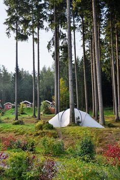 Would you like to go camping? If you would, you may be interested in turning your next camping adventure into a camping vacation. Camping vacations are fun Camping Europe, Camping Places, Camping World, Tent Camping, Outdoor Camping, Camping Trailers, Camping Jokes, Camping Tricks, Camping Checklist