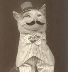 Funny Vintage Pics (13)