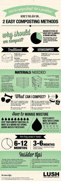 Composting 101: A beginner's guide to creating soil from scraps