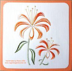 Grußkarten-Set 208 / 209 Motiv: Blumen 32 Doppelkarte mit Umschlag 13,5 x 13,5 cm