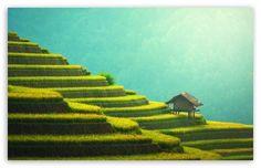 Rice Terraces Mountain Landscape wallpaper