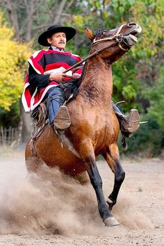 A bucking bronco saddled by a good old Chilean 'huaso' or cowboy. Island Horse, Chili, 12 Tribes Of Israel, People Of The World, Horseback Riding, South America, Places To See, Horses, Culture