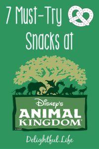 best snacks at animal kingdom
