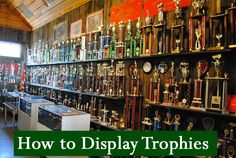 If you or your children have a trophy collection, the collection can easily look junky if not displayed properly. Here are some ideas for displaying trophies. Trophy Shelf, Trophy Display, Award Display, Display Shelves, Display Ideas, Shelving, Diy Clothes Rack Pipe, Trophy Store, Dance Rooms