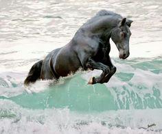Horse & Sea, who needs more? #horses #sea