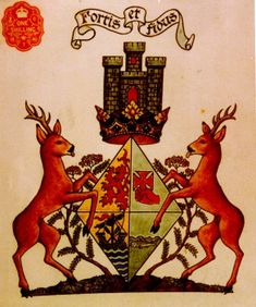 Coat of Arms of the Chiefess of Mac Lachlan