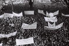 Reveja os momentos da revolução do 25 de Abril de 1974 - JN