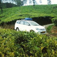 Our #innova at #Munnar