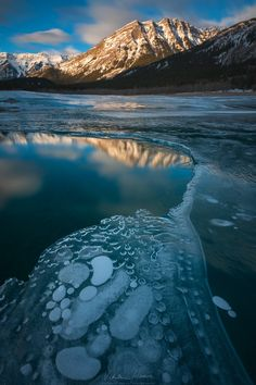 "the bubble factory - Amazing to watch the methane bubbles rising in this open patch of water on Abraham Lake.  My <a href=""https://www.facebook.com/pages/Viktoria-Haack-Photography/116186781787512?pnref=lhc""> facebook </a> and <a href=""https://instagram.com/viktoriahaack/""> instagram </a>"