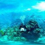 Escape reality with Hamilton Island
