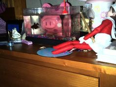 Suzy is fishing for Doodle's Betta, Minnow!  Elf on the shelf