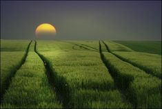 a new day dawns...