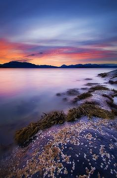 ~~INTO THE SEA ~ Harstad, Troms Fylke, Norway by ~~~johnny~~~