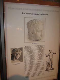 VENOSA - Museo del Castello Pirro del Balzo. - 40°58′00″N 15°49′00″E