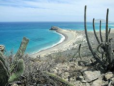 Cabo Pulmo Point, Baja California, Mexico | Flickr - Photo Sharing!