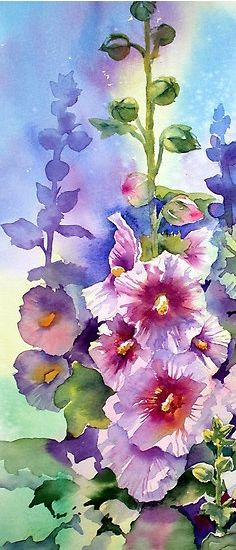 Hollyhocks painted in watercolour
