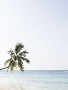 Maldives. @The Coveteur