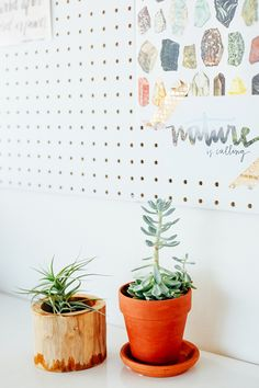 30 Small Steps You Can Take Now for a More Conscious Lifestyle - Conscious Shop Collective