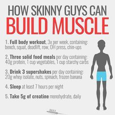 If you're naturally skinny and find that it is hard to wear ANY weight, not to say muscle, then you probably fall under the category of ectomorph (or hardgainer Skinny Guy Workout, Full Body Gym Workout, Workout Plan For Men, Workout Men, Men Exercise, Workout Plans, Parkour Workout, Shred Workout, Biceps Workout