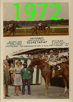 Secretariat - my favorite race horse All The Pretty Horses, Beautiful Horses, Animals Beautiful, The Belmont Stakes, Derby Horse, Faster Horses, The Great Race, Sport Of Kings, Majestic Horse