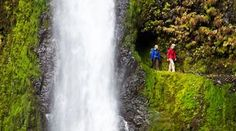 (kinda) hidden hikes...stretching from the edge of Portland, Oregon, and Vancouver, Washington, to east of the Cascade mountain range is the 85 mile-long Columbia River Gorge Scenic Area, a 4,000ft deep gorge that slices through the extreme topography.
