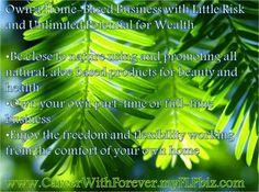 own a home-based biz