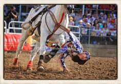Belle Fourche, SD; Black Hills Roundup Rodeo; Riata Ranch Cowboy Girls; photo by Jodie Baxendale