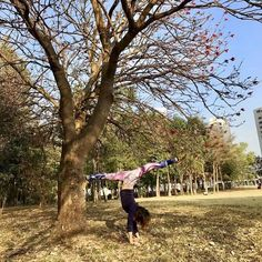 """When you improve a little each day eventually big things occur."""" #chicmoda #chicmodasport #outside #yogapants #yoga #yogachallenge #fitness #trees #handstand #park #leaves #sports #life #beautiful #lifeisgood #instagood #morning #goodmorning"""