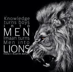 Where are our lions?