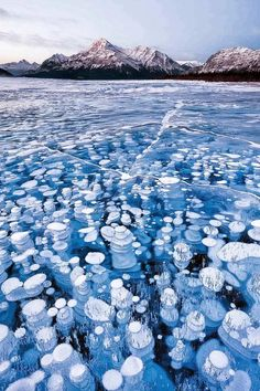 This unique lake Abraham in Alberta, Canada, has cool-looking bubbles frozen near the surface.