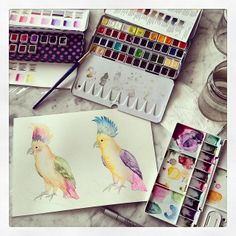 Colorful cockatoos  by @Marina Zlochin Barbato